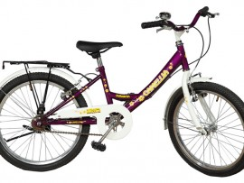 "Camellia Duranta Bicycle 20"": Pran RFL cycle for girls"