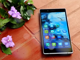 The Walton Primo ZX2 review
