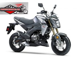 Kawasaki Z125 Motorcycle Price in Bangladesh and Full Specification